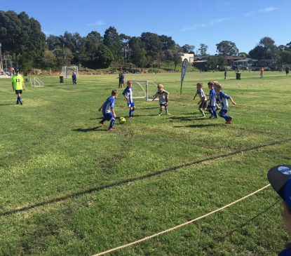 SSFA Miniroos (Grassroots) Coaching Course