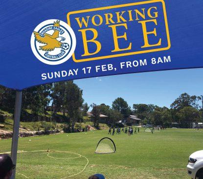 Working bee 17 feb 2019